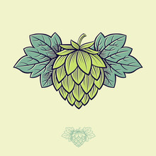 Green Hop Cone. Hop Cone Logo. Beer Cone Hop And Leaves Illustration. Engraving Style. Monochrome Option.