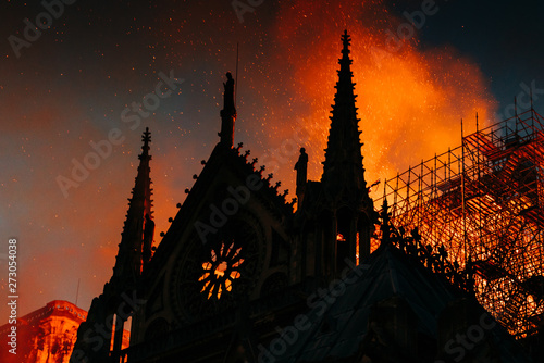 Photo notre dame de paris incendié