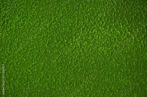 Foto op Plexiglas Groene texture of green grass