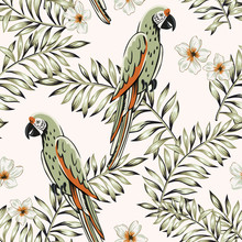Macaw Green Parrots, Palm Leaves, Plumeria Flowers, Light Background. Vector Floral Seamless Pattern. Tropical Illustration. Exotic Plants, Birds. Summer Beach Design. Paradise Nature