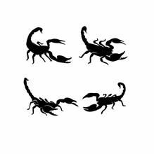 Set Scorpion Black Logo Icon Design Vector Illustration