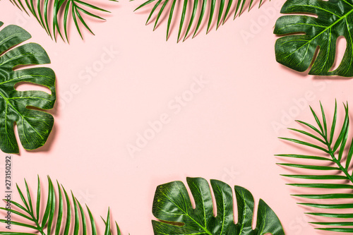 Foto auf Leinwand Blumen Tropical leaves on pink background.