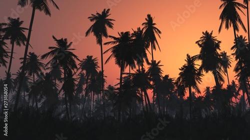 Montage in der Fensternische Schwarz Jungle in the fog at sunrise, palm trees in the haze