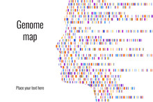 Dna Test Infographic. Vector I...
