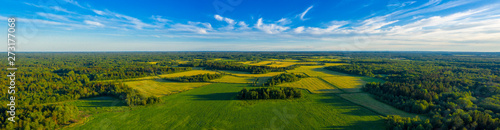 Photo Top aerial panoramic view of green fields and meadows in summer