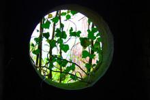 Porthole Or Round Hole Window ...