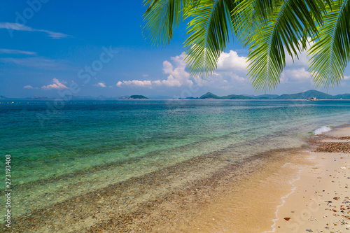 Tropical sea with green water and blue sky have green palm leafs on top.
