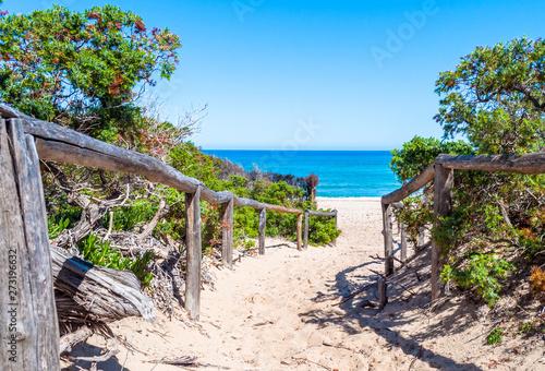 Obraz path towards the sea through the beach - fototapety do salonu
