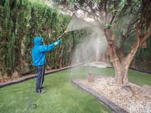 Man Spraying A Garden Using Pe...