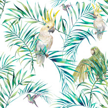 Watercolor Tropical Seamless Pattern. Vibrant Wallpaper With Exotic Birds, Leaves And Branches On White Background. Palm Tree And Cockatoo, Parrots, Colibri