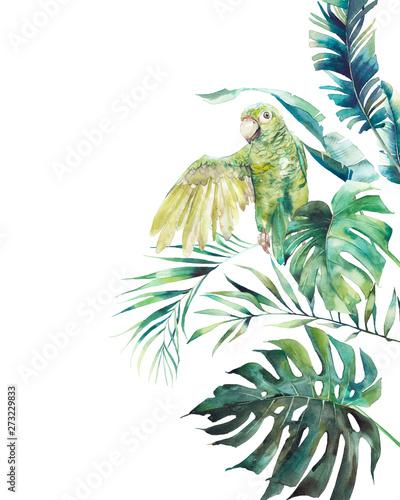 rama-akwarela-zielony-papuga-recznie-rysowane-pozdrowienie-projekt-z-egzotycznych-lisci-i-galezi-na-bialym-tle-palma-liscie-bananow-wiekszosc-roslin