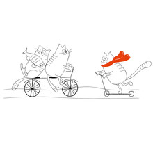 Cats Riding A Bicycle And A Sc...