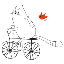 Cat Riding A Bicycle Flat Illustration