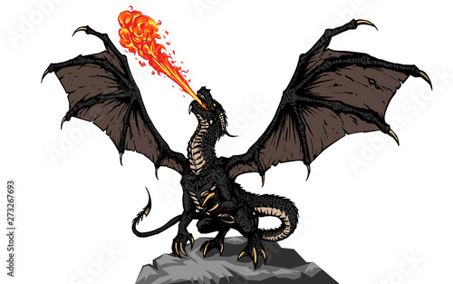 Obraz na plátně Dragon fire breathing spreading wings, illustration