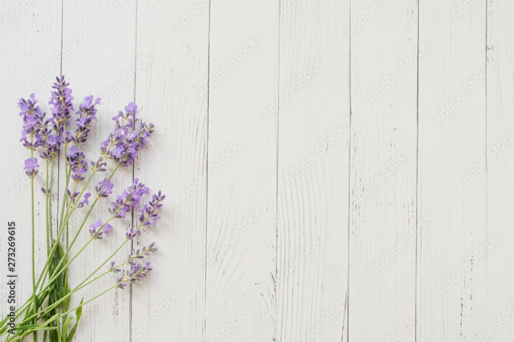 Fototapety, obrazy: Composition of lavender on white wooden background. Violet summer flowers. Free space