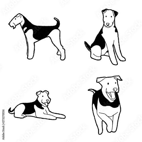 Photo Airedale Terrier Vector Illustration Hand Drawn Animal Cartoon Art