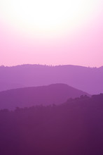 Ultra Violet Purple Summer Lan...