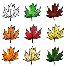Vector Set Of Autumn Leaves Isolated On White Background
