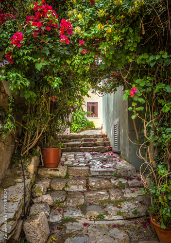 Fototapeta premium Old narrow street with flowers in Plaka district, Athens, Greece. Plaka is one of the main tourist attractions of Athens. Scenic beautiful alley like overgrown tunnel in the Athens city center.