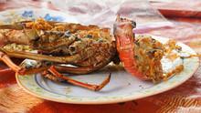 Freshly Grilled Lobster On Uni...