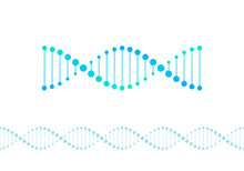 Vector Science Design Elements. Flat Blue Gradient DNA Spiral Symbol And Horizontal Border Seamless Pattern Isolated On White Background. Design For Scientific Banner, Poster, Logo, Infographic, Web