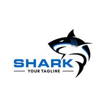 Wild Shark Logo Stock Image