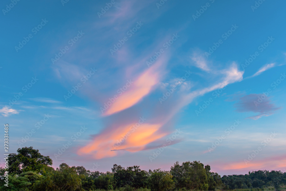 Fototapeta Sky and cloud at sunset with sunset light effects background. clouds twilight and dramatic sky background.