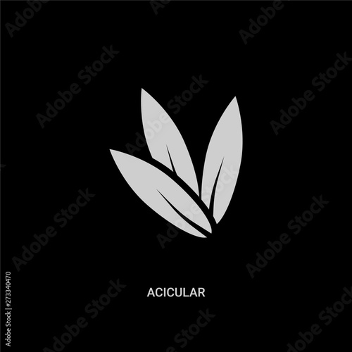 white acicular vector icon on black background Canvas Print