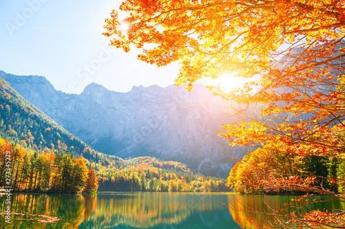 Fotomural Autumn trees on the shore of Hinterer Langbathsee lake in Alps mountains, Austria