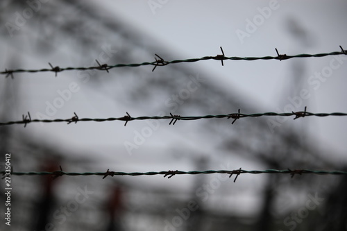 barbed wire with the blurred background of a refugee camp Canvas Print