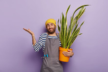 Botany And Gardening Concept. Doubtful Flower Grower Holds Potted Green Succulent Snake Plant, Enjoys Hobby, Raises Palm In Confusion, Doesnt Know How Take Care This Type Of Plant. Home Decor.