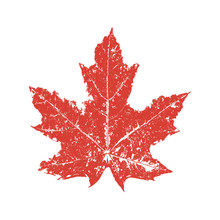 Red Maple Leaf In Grunge Style. Vector Illustration