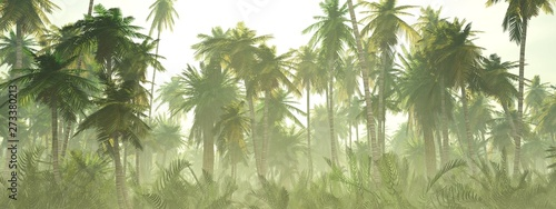 Deurstickers Pistache Jungle in the fog at sunrise, palm trees in the haze