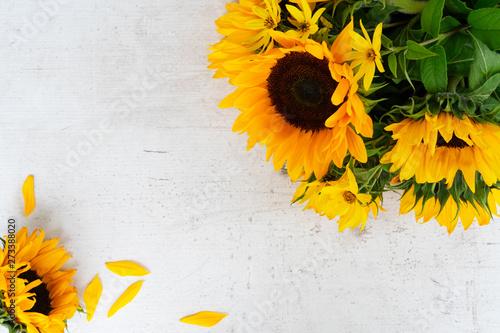 Fotografia Sunflowers on white