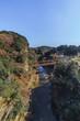 秋の養老渓谷の渓谷橋からみた風景