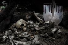 Skull And Skeleton Shovel With...