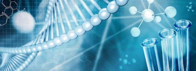 DNA - Biologie - Forschung