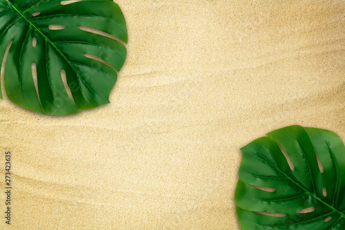Poster Pays d Asie Top view tropical green monstera leaves frame border on beach sand texture background. Summer decoration with copy space. Flat lay