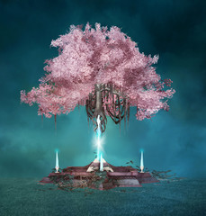 FototapetaMagic pink tree in the blue night