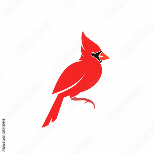 Tablou Canvas Northern cardinal