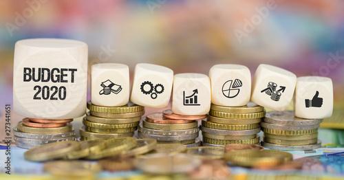 Fotomural Budget 2020 / Münzenstapel mit Symbole