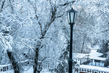 Beautiful Street Lamp In Snowy...