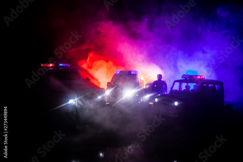 Canvas Print Police cars at night