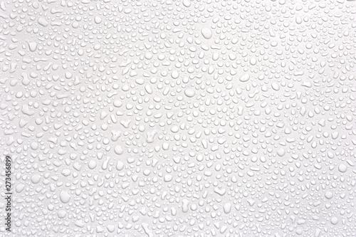 Fototapeta Water rain drops isolated on white background.