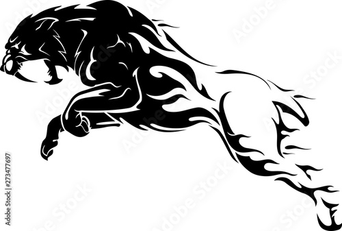 Fotomural Sabertooth Abstract Flame Body