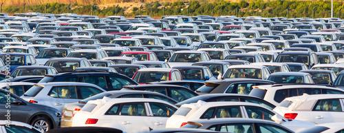Fototapeta New cars for sale obraz