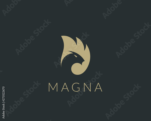 Fényképezés  Dragon fire wing vector logo