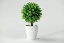 Artificial Copy Of A Tree Bonsai On A White Background
