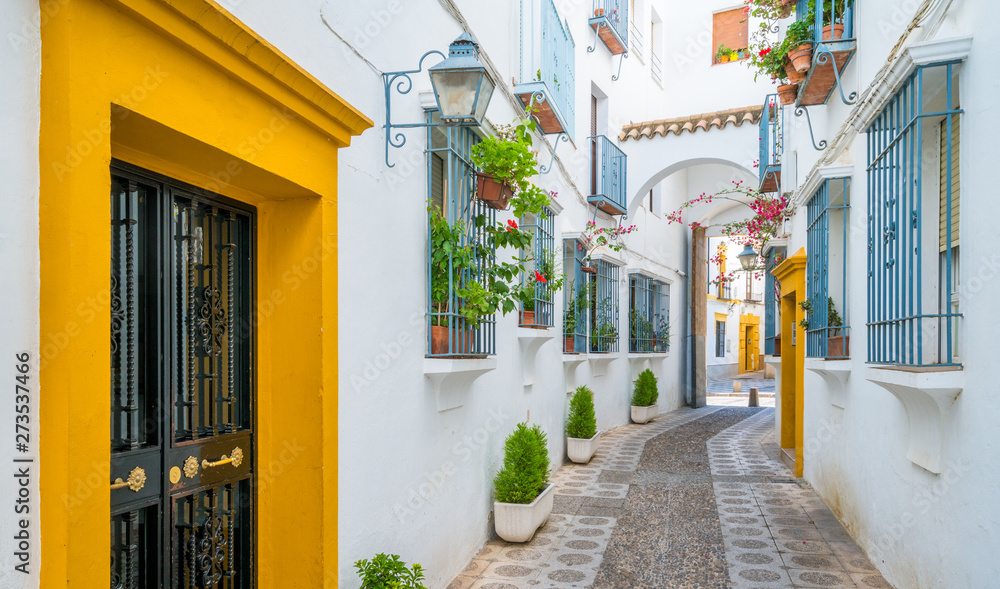 Fototapety, obrazy: Scenic sight in the picturesque Cordoba jewish quarter. Andalusia, Spain.