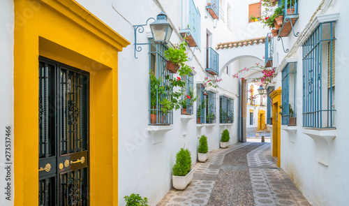 Scenic sight in the picturesque Cordoba jewish quarter Fotobehang